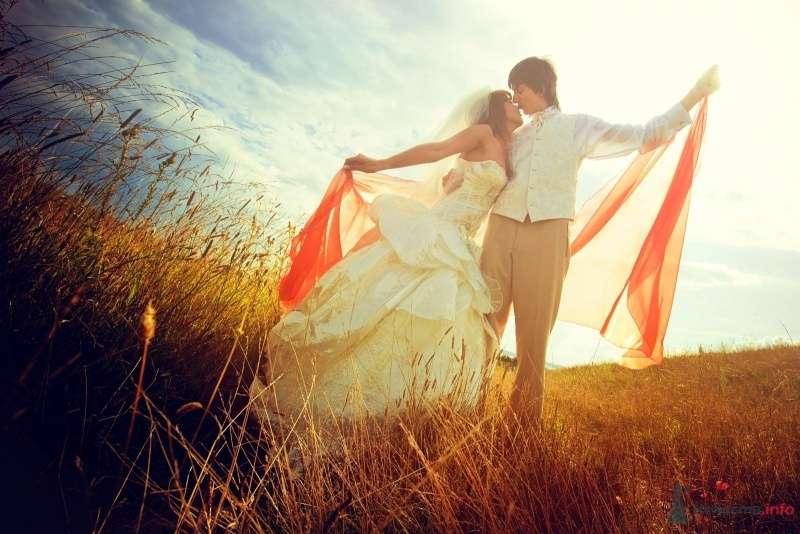 Фото 58058 в коллекции Моя оранжевая свадьба - yanechka