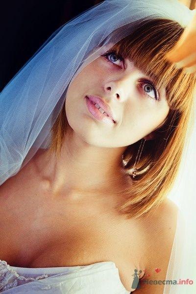 Фото 61740 в коллекции Моя оранжевая свадьба - yanechka