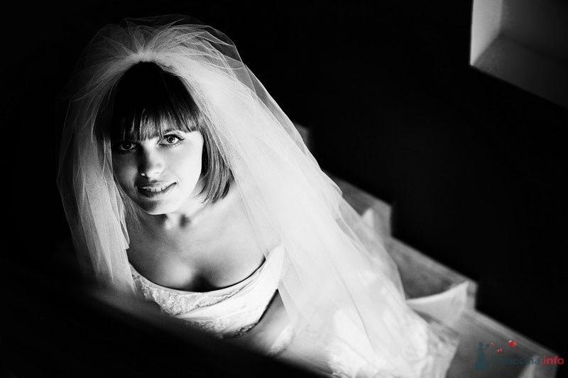Фото 61764 в коллекции Моя оранжевая свадьба