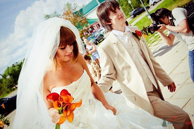Фото 61773 в коллекции Моя оранжевая свадьба - yanechka