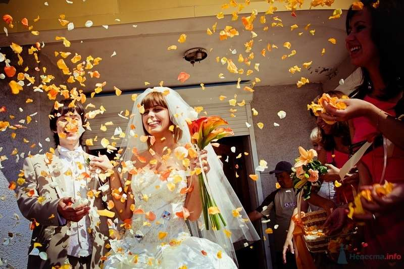 Фото 61798 в коллекции Моя оранжевая свадьба - yanechka