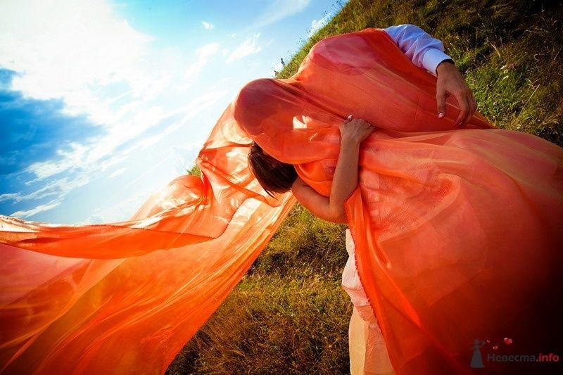 Фото 62147 в коллекции Моя оранжевая свадьба - yanechka