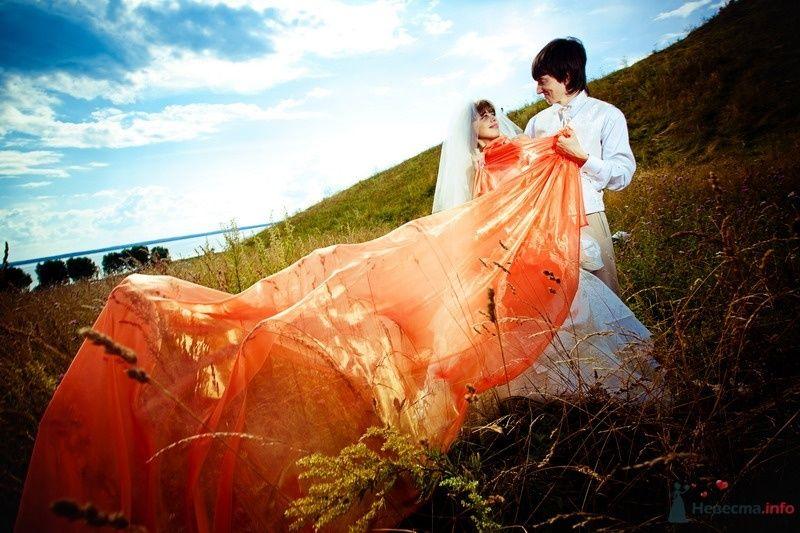 Фото 62152 в коллекции Моя оранжевая свадьба