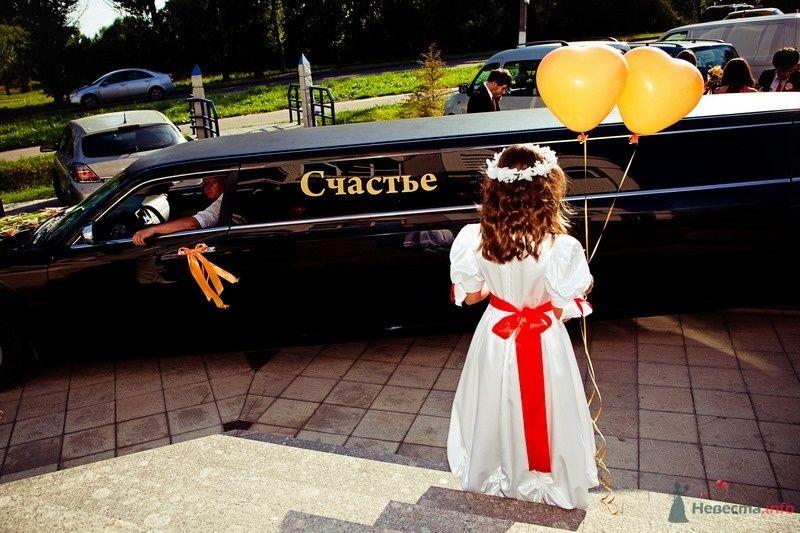 Фото 62455 в коллекции Моя оранжевая свадьба - yanechka