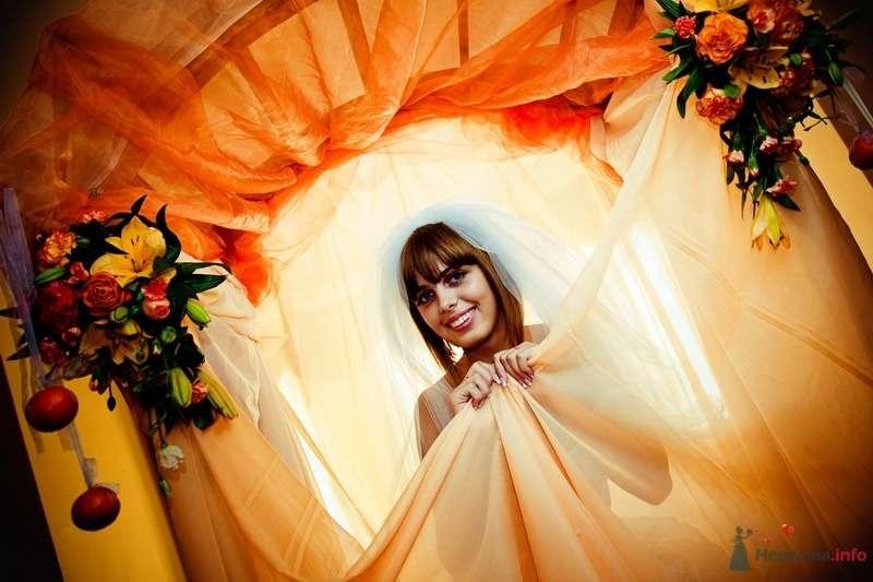 Фото 62732 в коллекции Моя оранжевая свадьба - yanechka