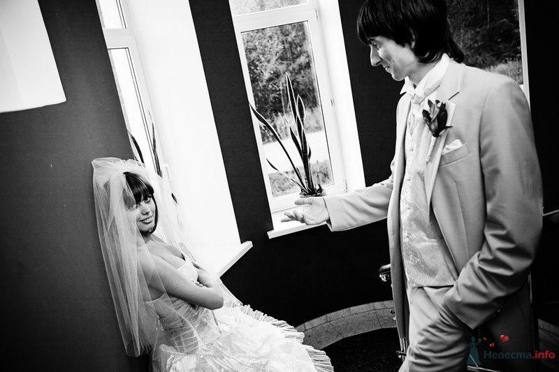 Фото 62750 в коллекции Моя оранжевая свадьба - yanechka