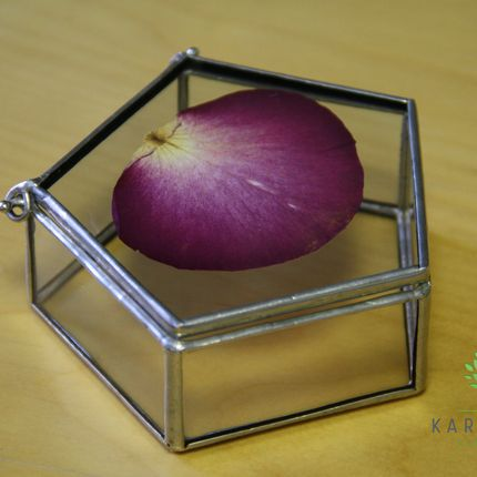 Шкатулка с гербарием для колец