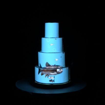 3D mapping шоу на торт Индивидуальный контент