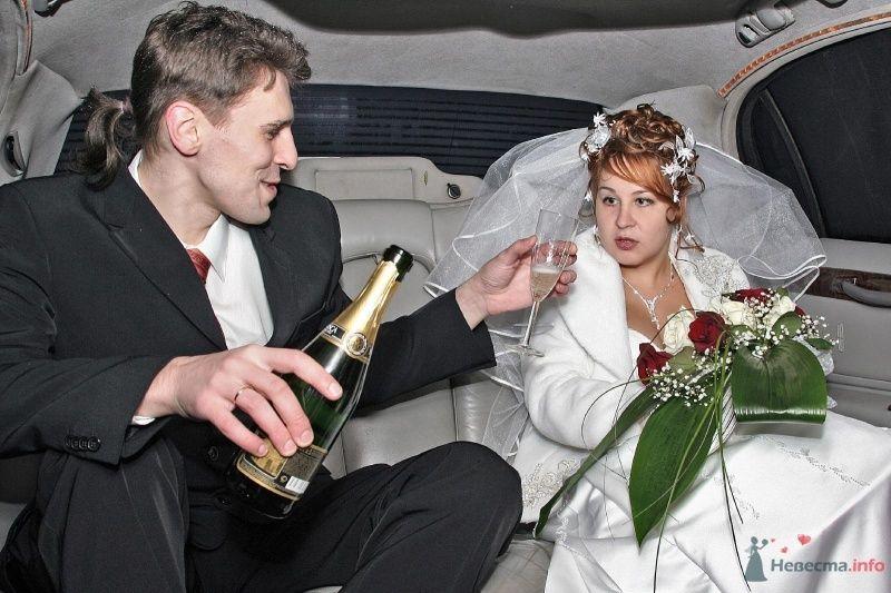 как ты посмел предложить даме шампанское? только спирт!!! - фото 51455 Симба