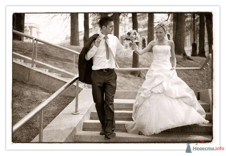 Андрей и Оксана - фото 46948 Фотографы Тили и Гев
