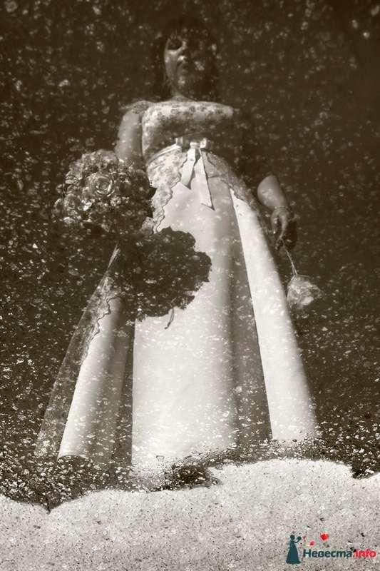 Свадьба Яны и Алексея - фото 91496 Фотографы Тили и Гев
