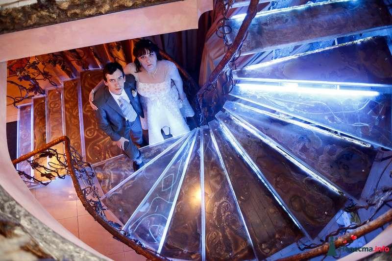 Свадьба Яны и Алексея - фото 91498 Фотографы Тили и Гев