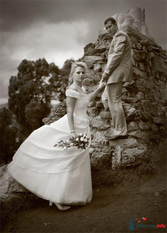 Фото 91592 в коллекции Алексей и Наталья - Фотографы Тили и Гев