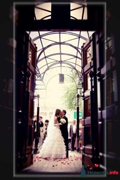 Фото 103751 в коллекции  сиреневая свадьба - Невеста01