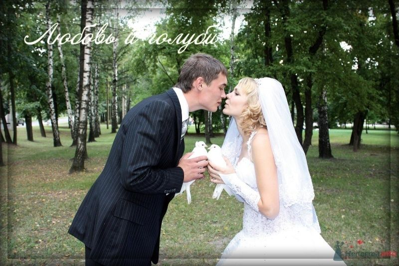 Фото 47581 в коллекции Летняя свадьба