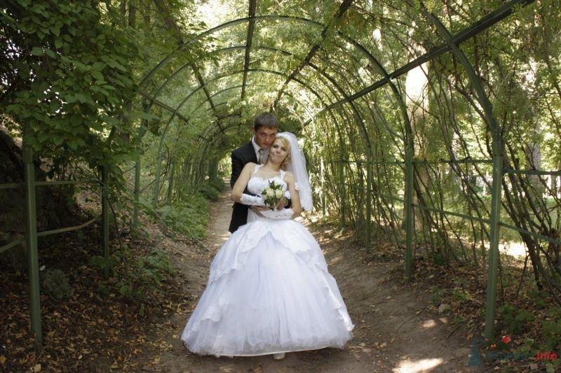 Фото 47582 в коллекции Летняя свадьба - Lizaveta