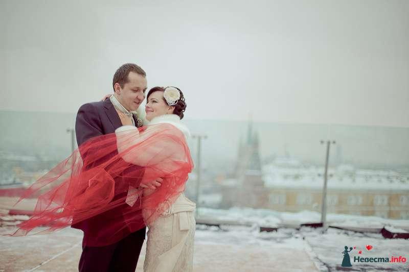 Фото 203578 в коллекции Мои фотографии - Фотограф Анна Овчинникова