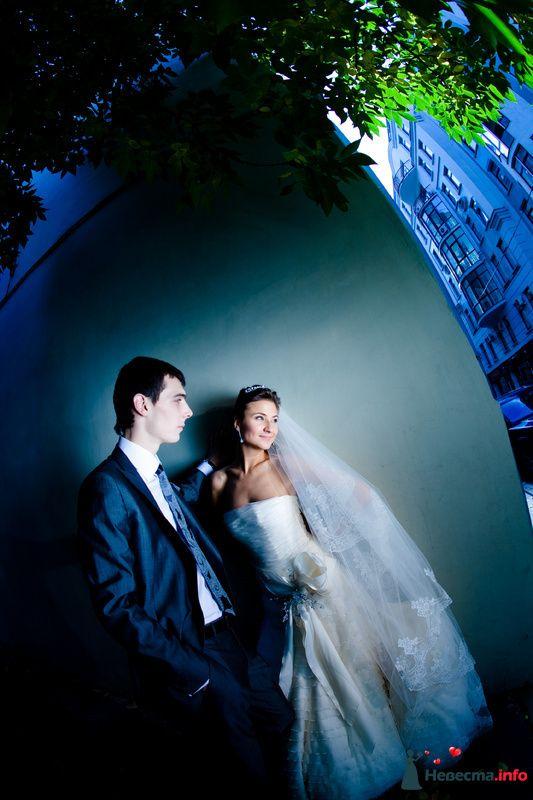 Eye - фото 112496 Свадебный фотограф Алексей Константинов