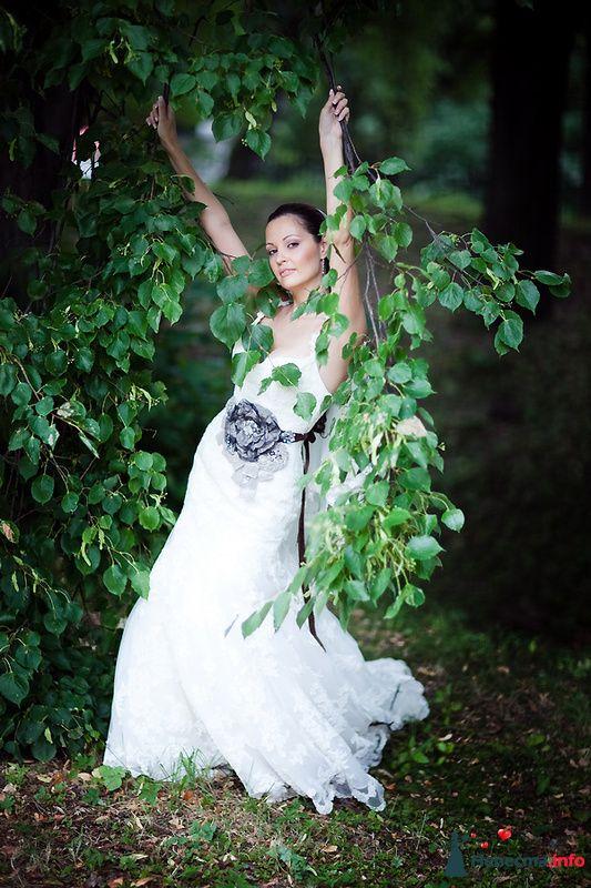 Green - фото 131887 Свадебный фотограф Алексей Константинов