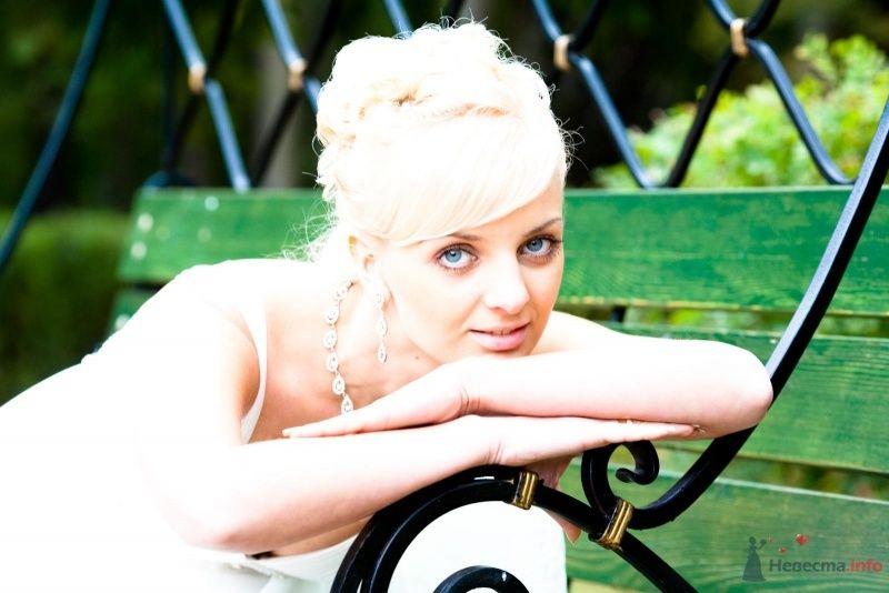 Фото 59499 в коллекции Мои фотографии - П.Светлана