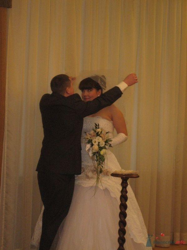 Фото 60827 в коллекции Свадьба 8 января 2010 год)))  - Koshka_Lu