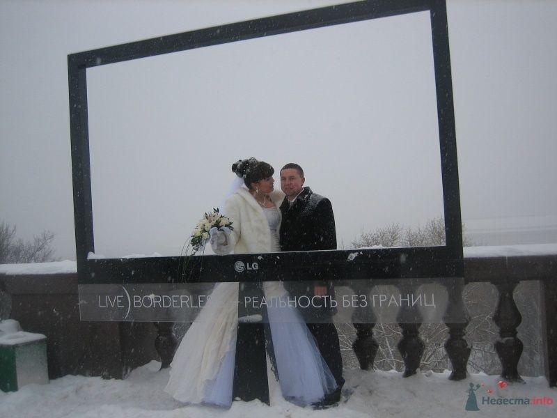 Фото 60835 в коллекции Свадьба 8 января 2010 год)))  - Koshka_Lu