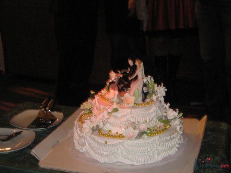 Фото 60843 в коллекции Свадьба 8 января 2010 год)))  - Koshka_Lu