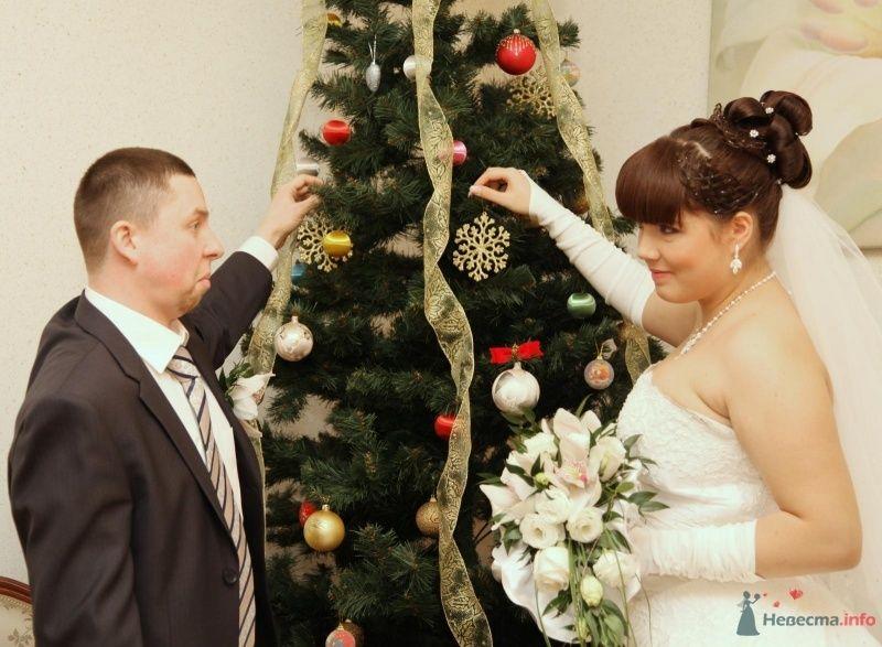 Фото 68366 в коллекции Как Кошка замуж выходила 08.01.2010 - Koshka_Lu