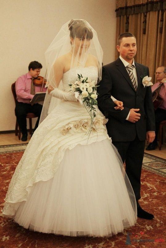 Фото 68376 в коллекции Как Кошка замуж выходила 08.01.2010 - Koshka_Lu