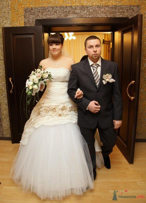 Фото 68389 в коллекции Как Кошка замуж выходила 08.01.2010 - Koshka_Lu