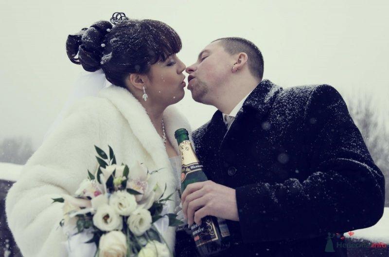 Фото 68395 в коллекции Как Кошка замуж выходила 08.01.2010 - Koshka_Lu