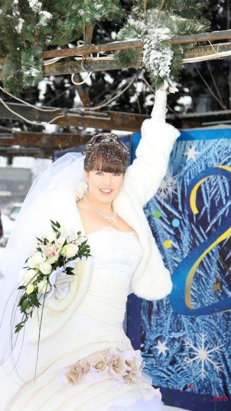 Фото 68396 в коллекции Как Кошка замуж выходила 08.01.2010 - Koshka_Lu