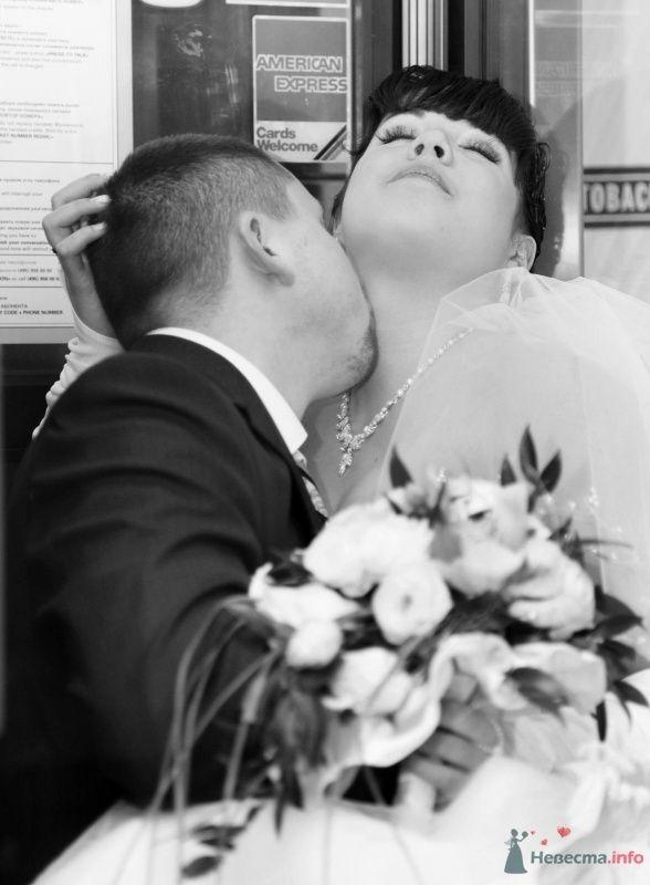 Фото 68441 в коллекции Как Кошка замуж выходила 08.01.2010 - Koshka_Lu