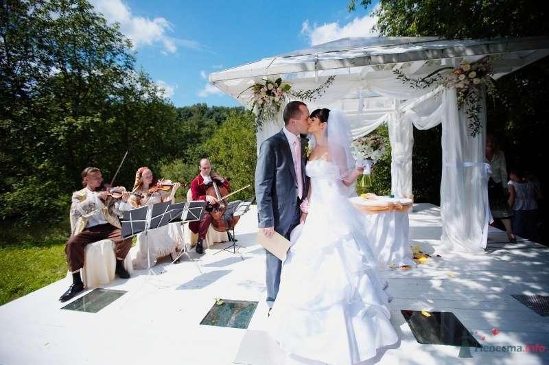 Жених и невеста стоят, прислонившись друг к другу, возле оркестра - фото 49107 tufelka