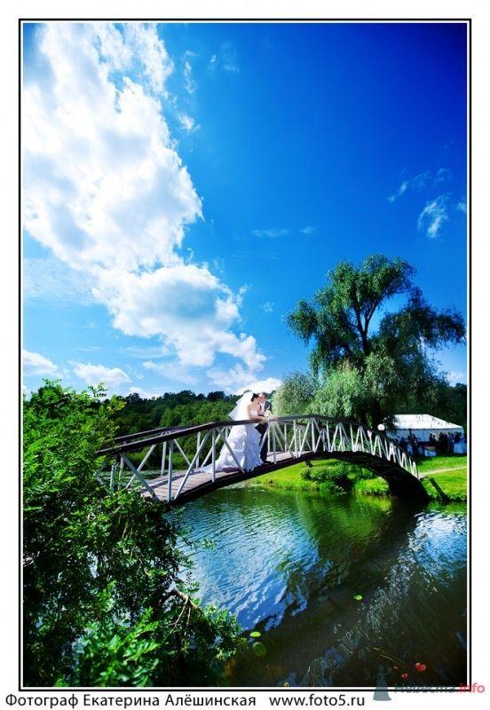 Фото 49109 в коллекции WEDDING - tufelka