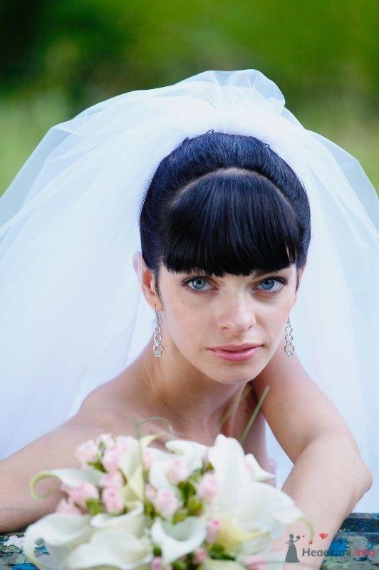 Фото 49111 в коллекции WEDDING - tufelka