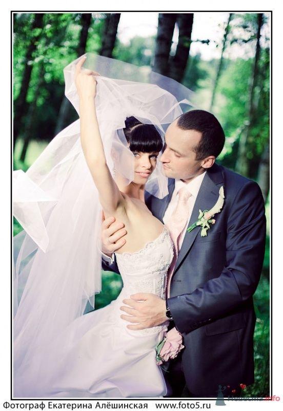 Фото 49113 в коллекции WEDDING
