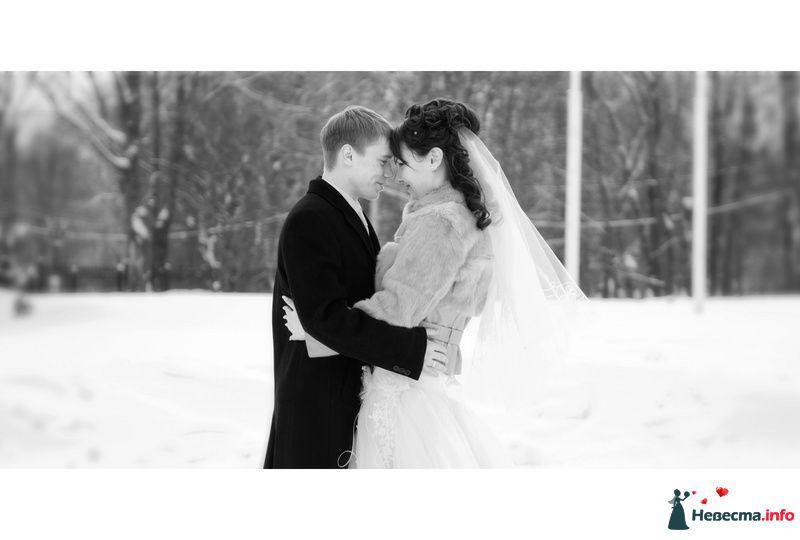 Фото 112287 в коллекции Наша свадьба =) Фотограф: Евгений Бондаренко (г.Череповец) - *сладкая Аленка*