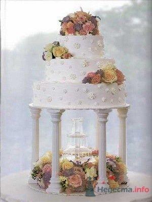 Фото 51899 в коллекции мои фотографии - Свадебный распорядитель Ольга Фокс