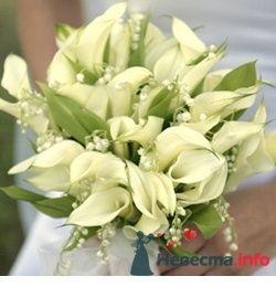 Фото 53850 в коллекции букет - Свадебный распорядитель Ольга Фокс