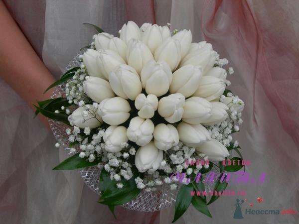 Фото 53853 в коллекции букет - Свадебный распорядитель Ольга Фокс