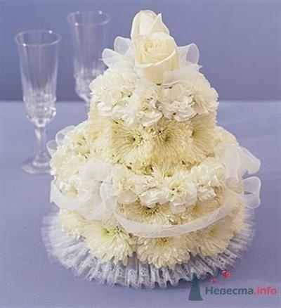 Фото 55217 в коллекции мои фотографии - Свадебный распорядитель Ольга Фокс