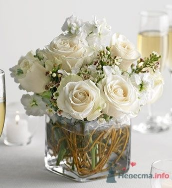 Фото 55222 в коллекции мои фотографии - Свадебный распорядитель Ольга Фокс