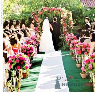 Фото 55979 в коллекции мои фотографии - Свадебный распорядитель Ольга Фокс