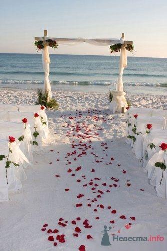 Фото 56063 в коллекции мои фотографии - Свадебный распорядитель Ольга Фокс
