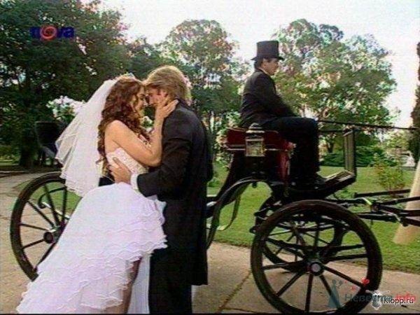 Фото 56267 в коллекции мои фотографии - Свадебный распорядитель Ольга Фокс