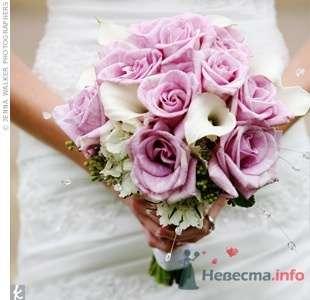 Фото 57306 в коллекции мои фотографии - Свадебный распорядитель Ольга Фокс