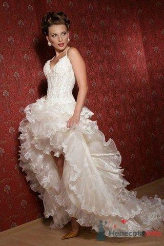 Фото 64409 в коллекции мои фотографии - Свадебный распорядитель Ольга Фокс