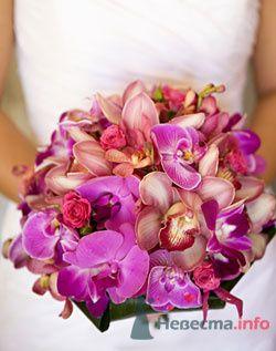 Фото 79053 в коллекции мои фотографии - Свадебный распорядитель Ольга Фокс