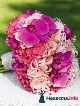 Фото 111950 в коллекции мои фотографии - Свадебный распорядитель Ольга Фокс